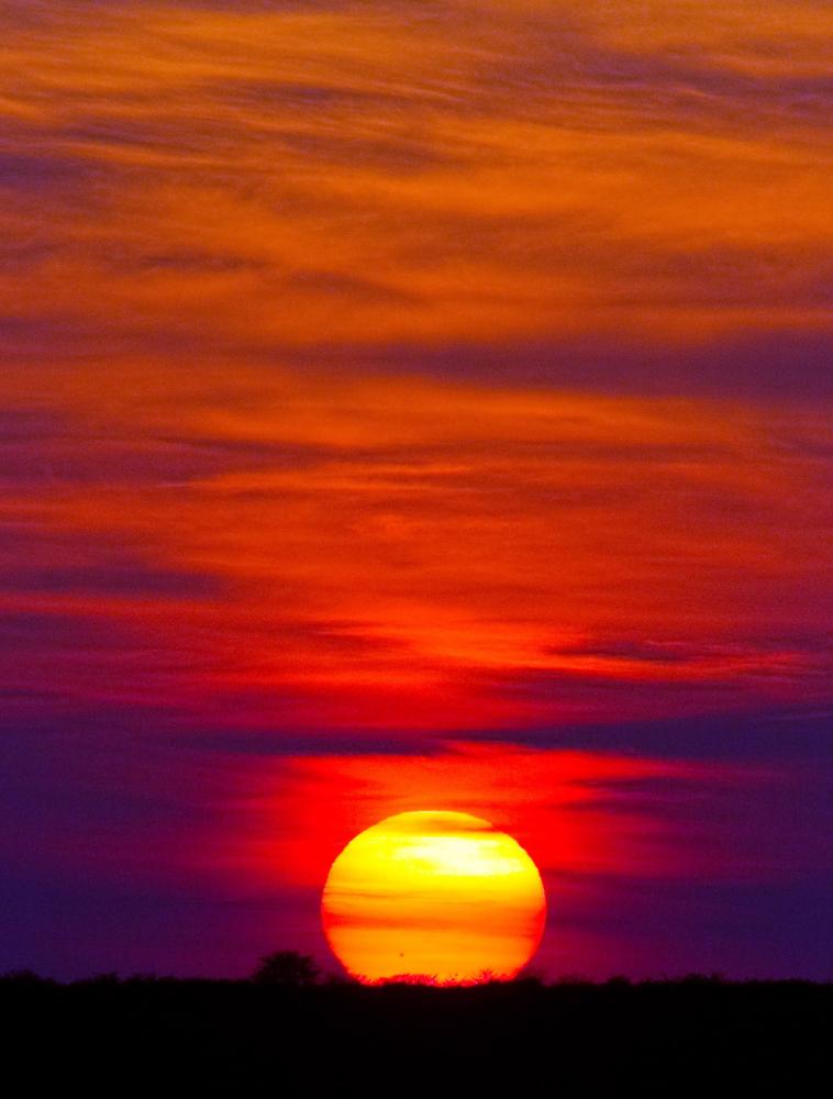 adunkley_cat6-sunrise-tau-pan_0072
